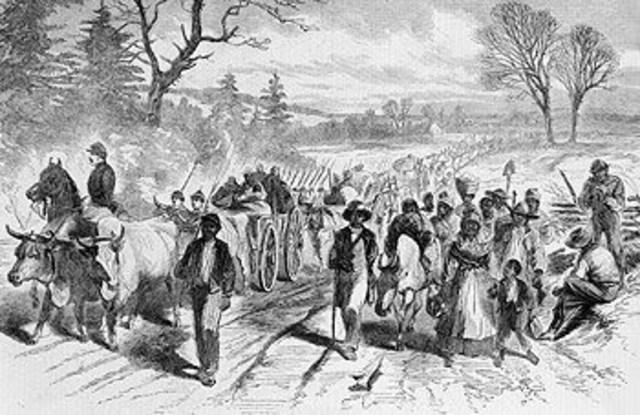 Texan Slaves Freed