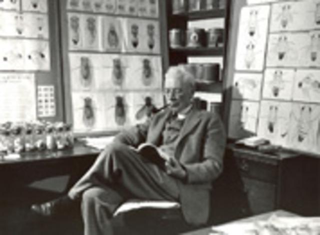 Alfred Sturtevant crea el primer mapa genético de un cromosoma