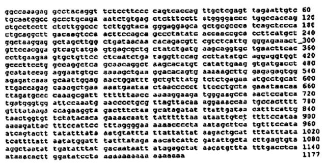Se denomina mutación a cualquier cambio en la secuencia nucleotídica de un gen, sea esta evidente o no en el fenotipo