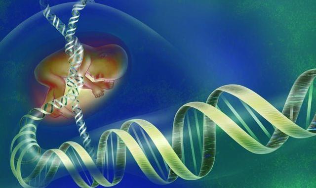 El Proyecto Genoma Humano y Celera Genomics presentan el primer borrador de la secuencia del genoma humano