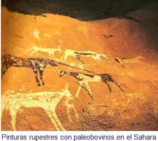 Desierto del Sahara: Nubia