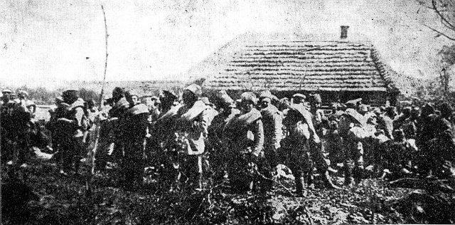 Batallas de Tarnov, Gorizia