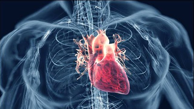Concern: increase risk of heart diseases