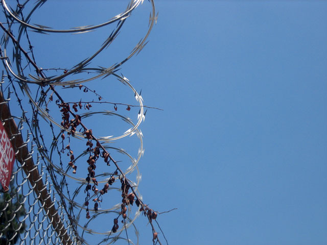 Perfected Barbed Wire
