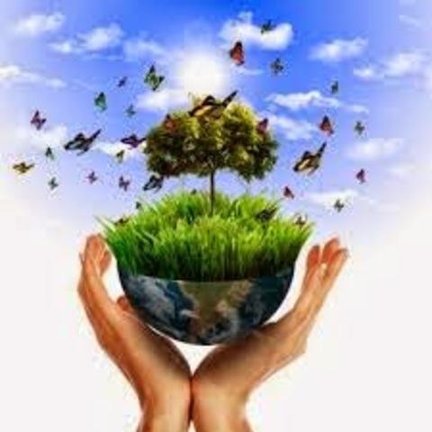 Código de Recursos Naturales y de Protección al Medio Ambiente y se dictan otras disposiciones.