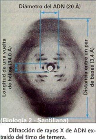 Difracción de rayos X del ADN