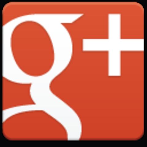 Google Panda y Google+.