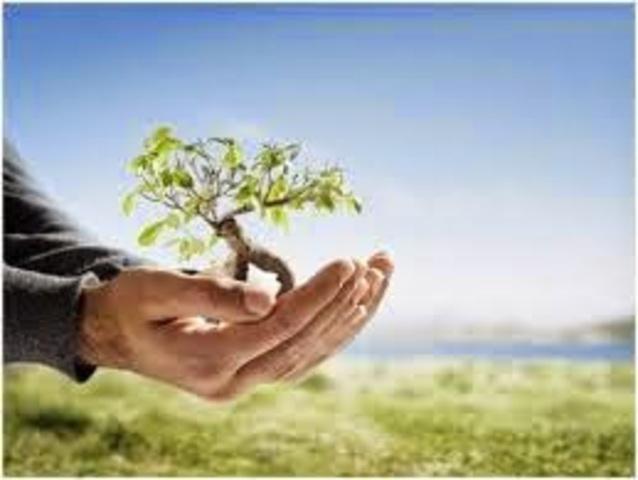 Estudio de la Psicología ambiental