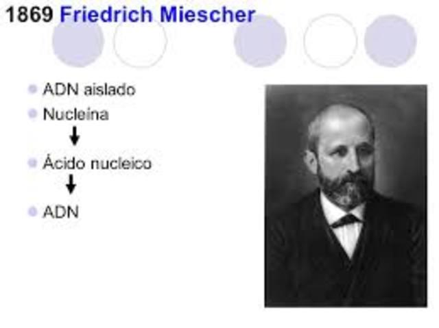Friedrich Miescher  Descubrimiento de los ácidos nucleicos.