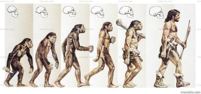 Charles Darwin. Teoría de la evolución