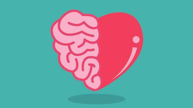 brain v's heart debate