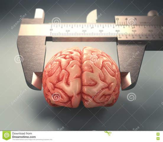 Medición de la Inteligencia