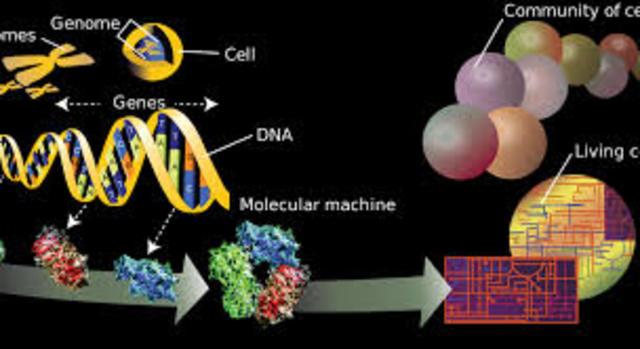 El inicio del proyecto genoma humano