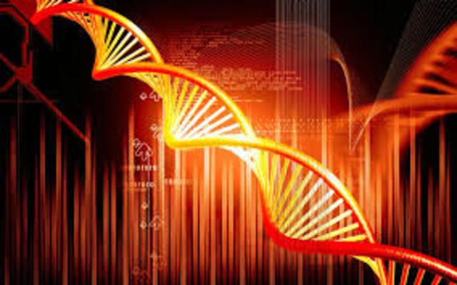 fin del proyecto piloto 1000 genomas