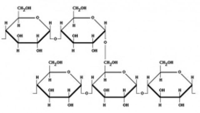 Catalizar almidon