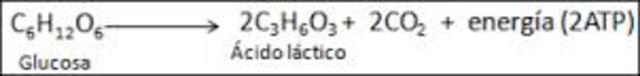 Ecuación de la fermentación alcohólica.