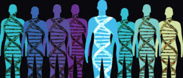 El Proyecto Genoma Humano