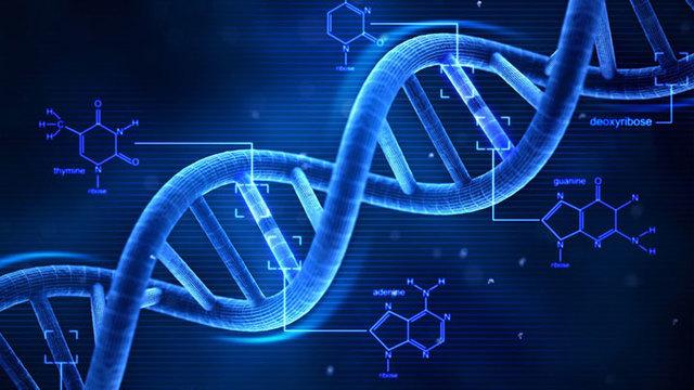 Genética moderna ADN