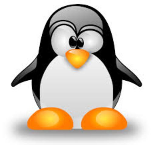 Linux es transportado a las plataformas informáticas DEC y SUN SPARC.