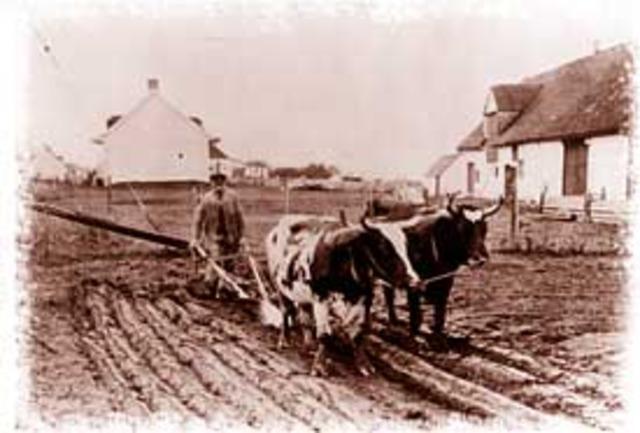 heavy iron plow/steel plow