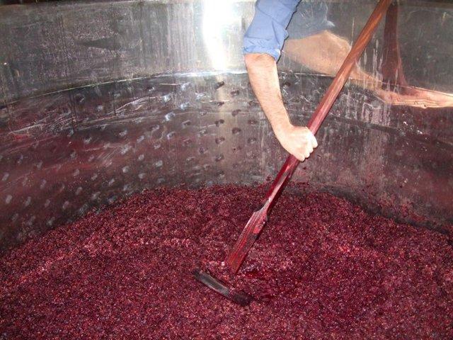 8000 a. C.  Proceso de fermentación.