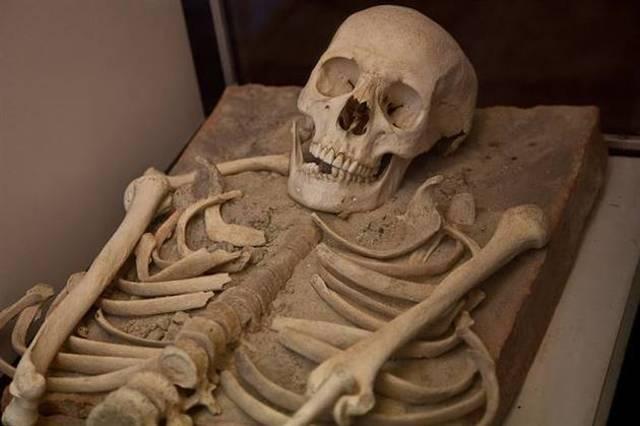 Descubren que el Genoma Humano más Antiguo Tiene 400.000 Años