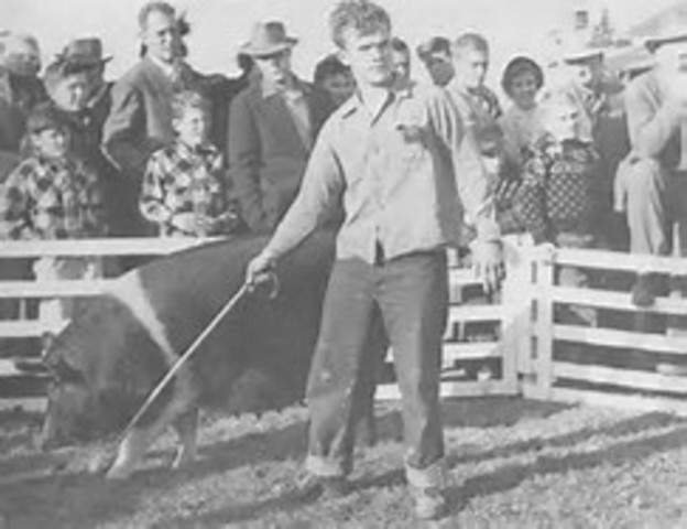 First Livestock Judging Contest