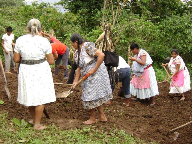 Enfoque y etapa de las políticas y programas de desarrollo rural en Desarrollo Rural Integrado