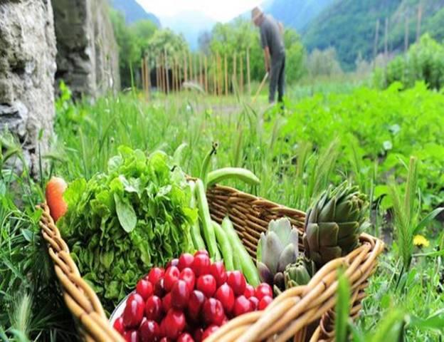 Programa de Inversiones para el Desarrollo Rural