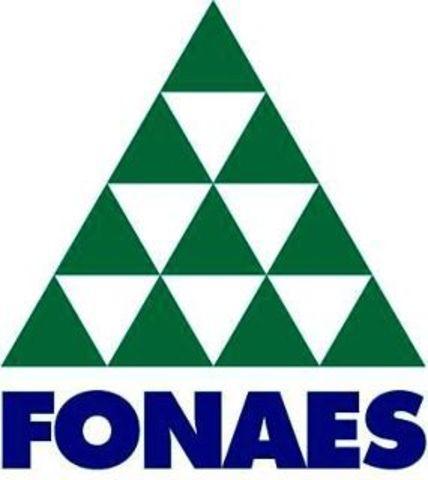 El Fondo Nacional de Apoyo a Empresas Sociales (FONAES), fue el pionero real del turismo rural en México