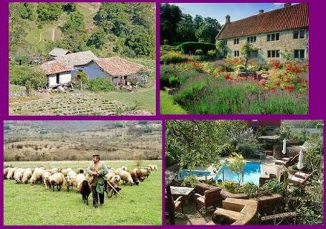 Desarrollo del turismo rural