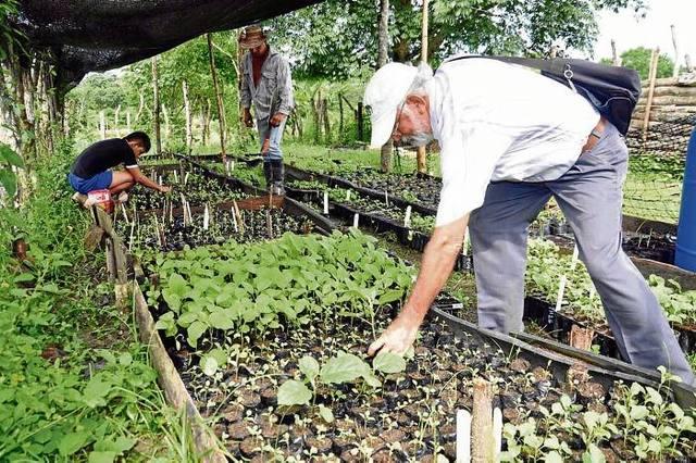 Se crea el Instituto Nacional de Tecnología Agropecuaria