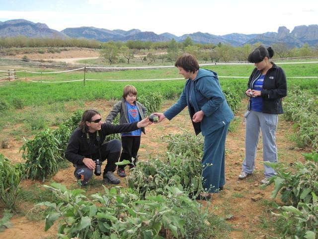Programas de Desarrollo Integrado de Turismo rural