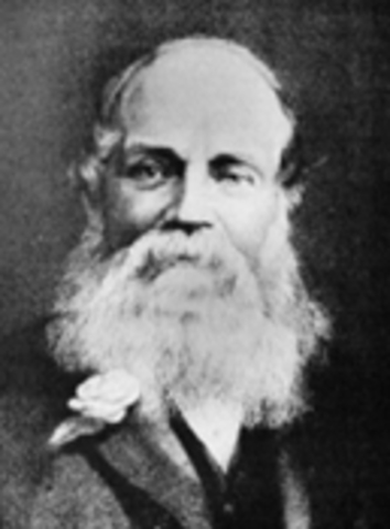 William Welch Deloitte
