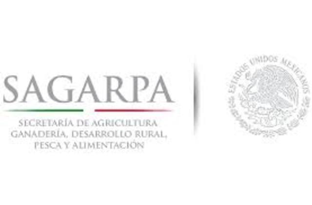 Secretaría de Agricultura, Ganadería, Desarrollo Rural, Pesca y Alimentación (SAGARPA).