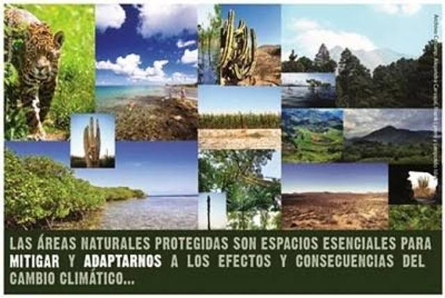 Programa Nacional de Áreas Protegidas Federales