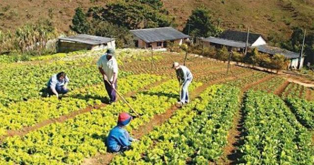 Se inaugura la subsecretaria de desarrollo rural y agricultura