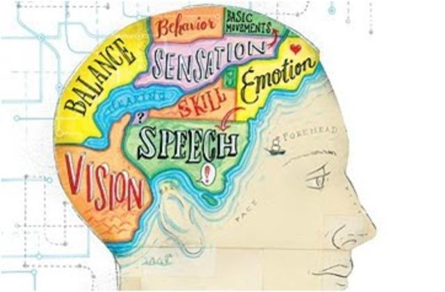Estrategias Cognitivas