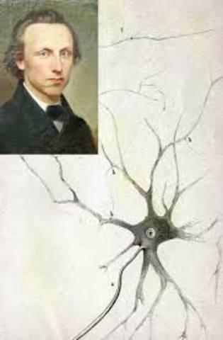 Otto Friedrich Dieters (1834-1863)