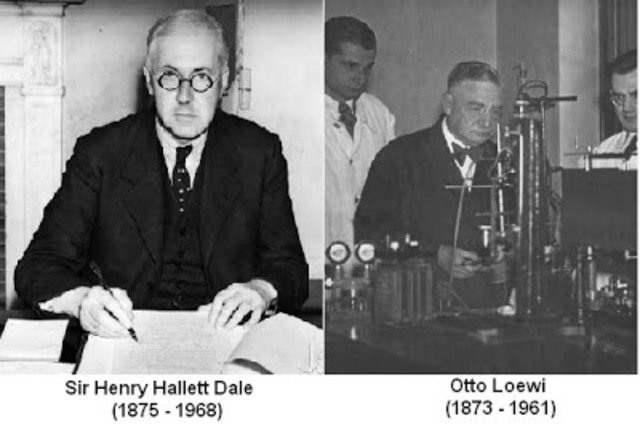 Henry Hallet Dale (1875-1968) y Otto Loewi (1873-1961)