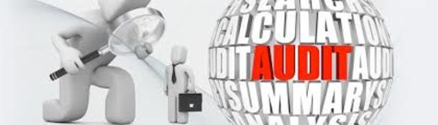 Publica Managment Audit System