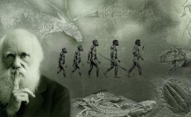 Teoría De La Evolución De Las Especies