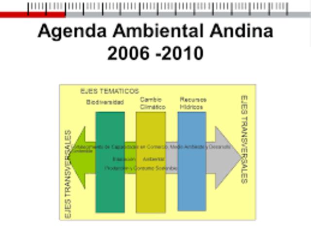 Se aprueba la Agenda Ambiental Andina 2006 - 2010.