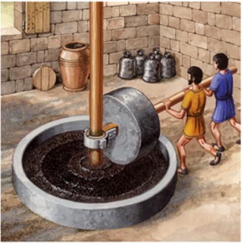 Proceso de extracción de aceite