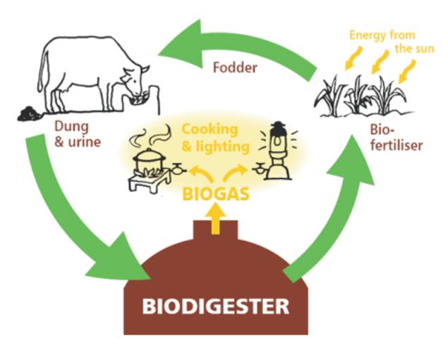 BioGas y sus avances