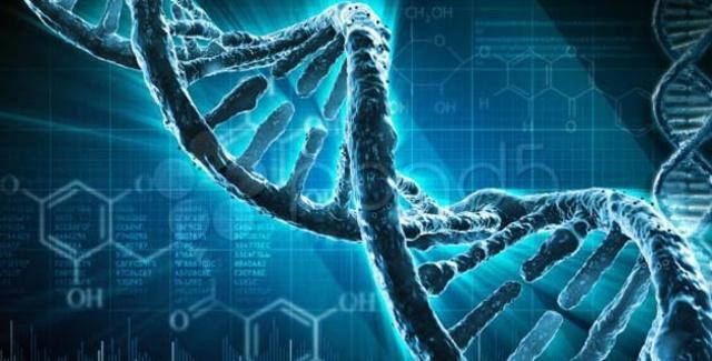 Presentacion del borrador del genoma humano