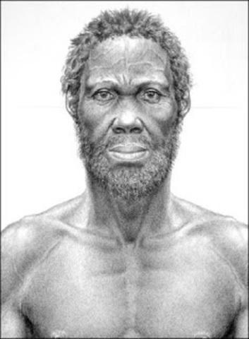 Homo sapiens idaltu