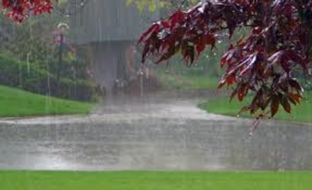 Todos aprovechando la lluvia