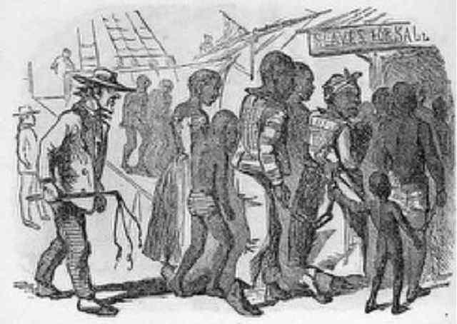 Portugal Begins to Ship Enslaved Africans to Sugar Plantations