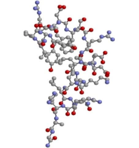 Descubrimiento de proteína